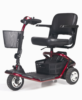Gl110 Literider Mobile Mobility Services Rochester Ny